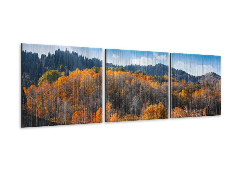 Panorama Metallic-Bild 3-teilig Wolken ziehen auf