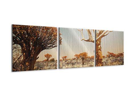 Panorama Metallic-Bild 3-teilig Afrikanische Landschaft