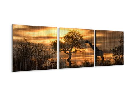 Panorama Metallic-Bild 3-teilig African Dreams