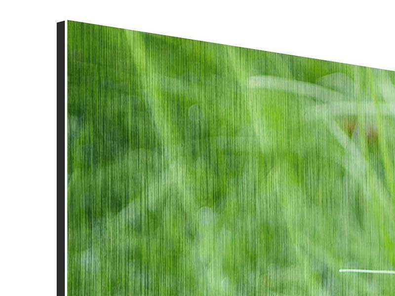 Panorama Metallic-Bild 3-teilig Grashalme