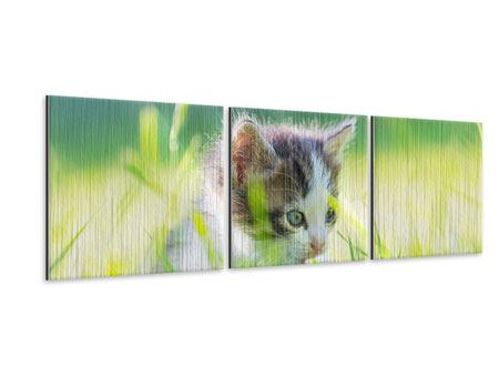 Panorama Metallic-Bild 3-teilig Kitten