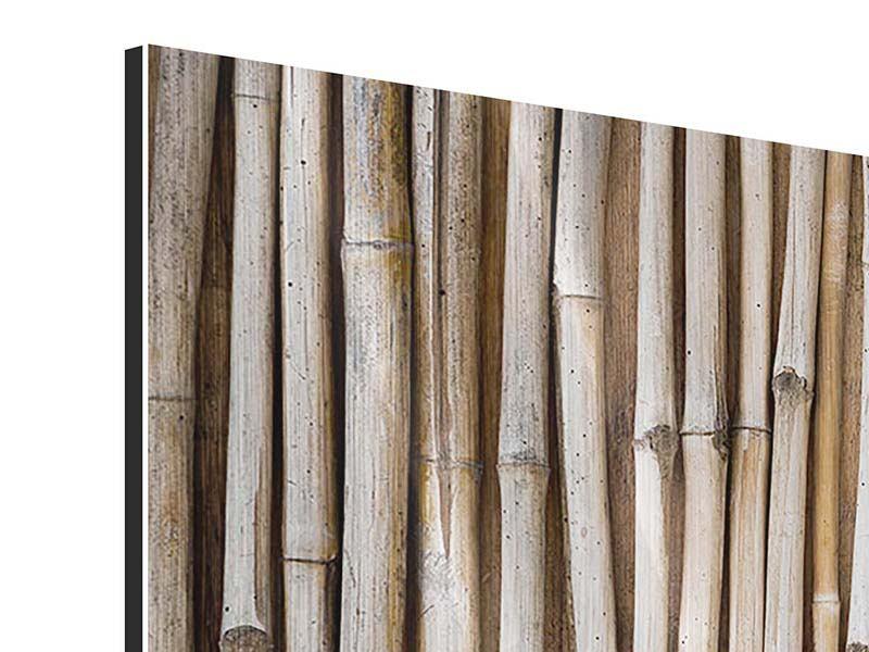 Panorama Metallic-Bild 3-teilig Getrocknete Bambusrohre