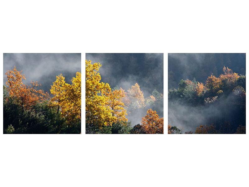Panorama Metallic-Bild 3-teilig Mondscheinwald