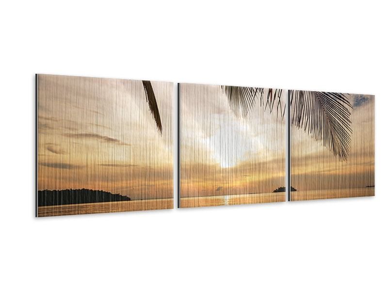 Panorama Metallic-Bild 3-teilig Strandpalme
