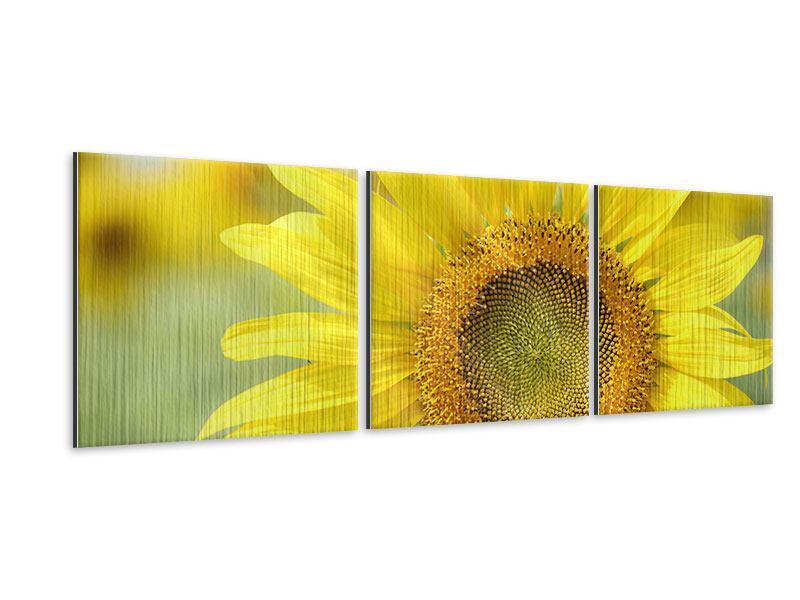 Panorama Metallic-Bild 3-teilig Die Blume der Sonne