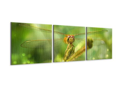 Panorama Metallic-Bild 3-teilig XXL-Libelle