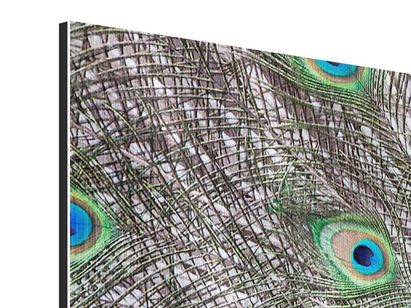 Panorama Metallic-Bild 3-teilig Blauer Pfau