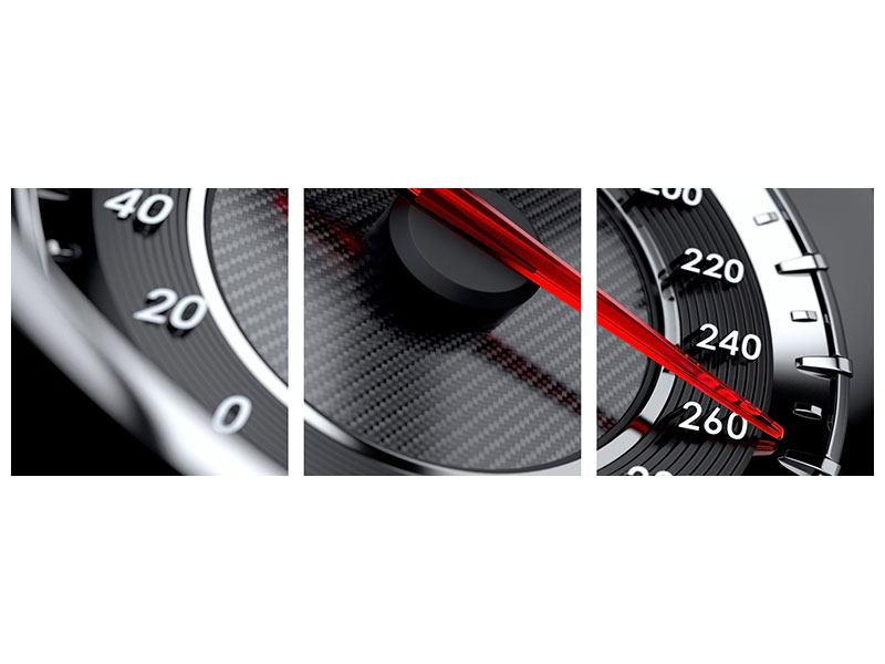 Panorama Metallic-Bild 3-teilig Geschwindigkeit