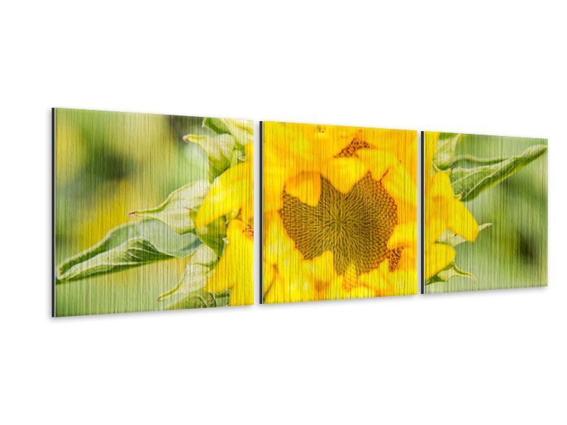 Panorama Metallic-Bild 3-teilig Wilde Sonnenblume