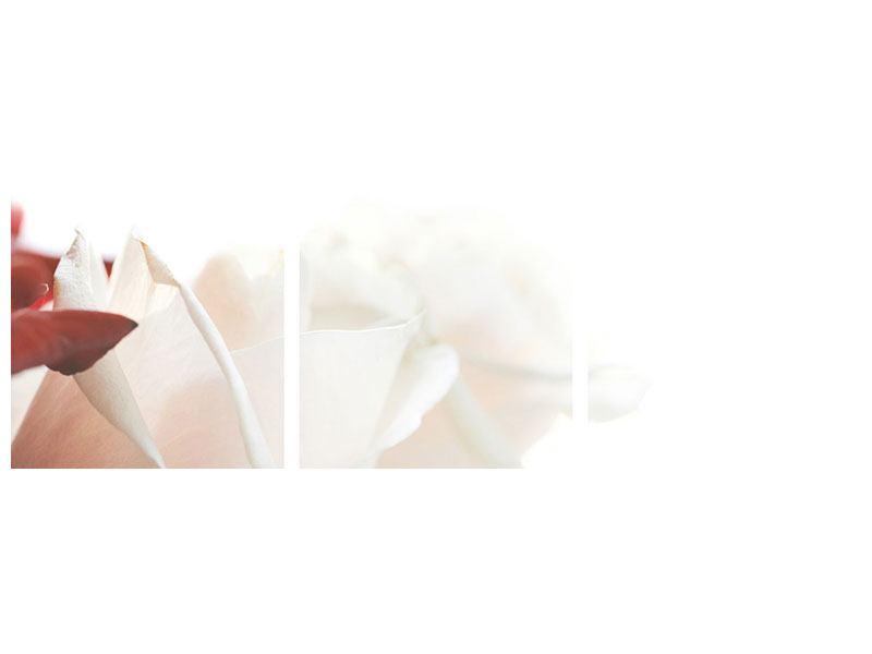 Panorama Metallic-Bild 3-teilig Herrliche Rosen