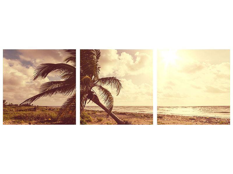 Panorama Metallic-Bild 3-teilig Die schiefe Palme