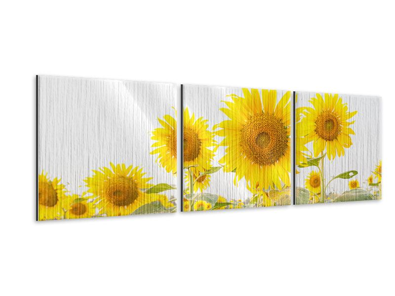 Panorama Metallic-Bild 3-teilig Das Sonnenblumenfeld