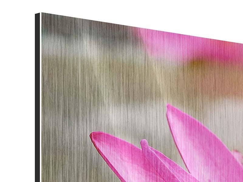 Panorama Metallic-Bild 3-teilig Sonnige Seerose