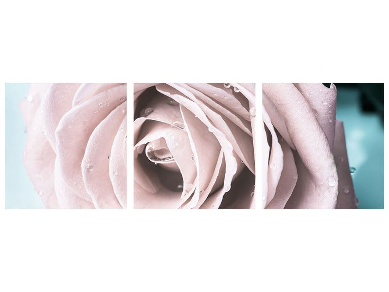Panorama Metallic-Bild 3-teilig Pastellrose