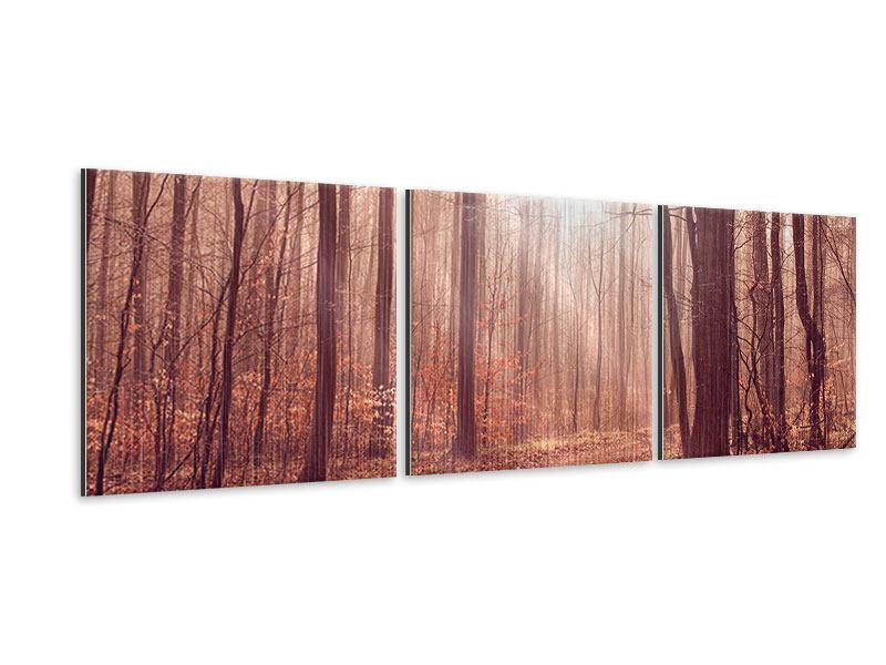 Panorama Metallic-Bild 3-teilig Sonnenuntergang im Herbstwald