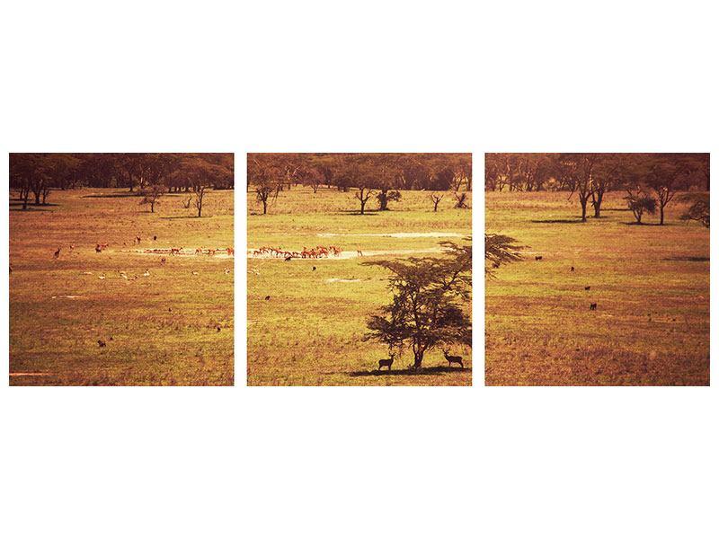 Panorama Metallic-Bild 3-teilig Malerisches Afrika