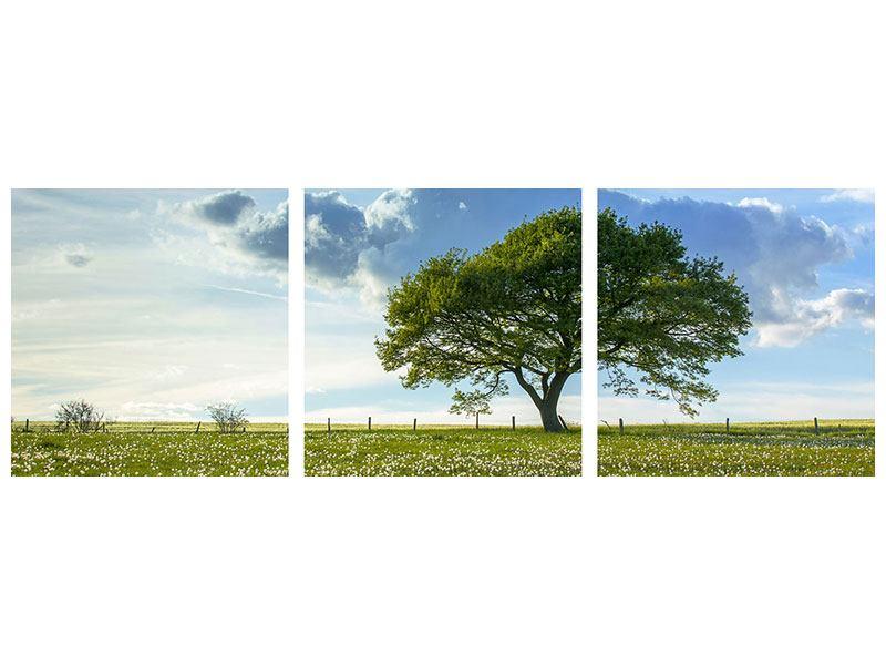 Panorama Metallic-Bild 3-teilig Frühlingsbaum