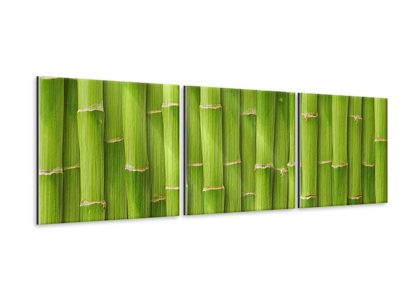 Panorama Metallic-Bild 3-teilig Bambuswand