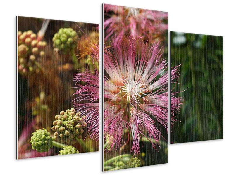Metallic-Bild 3-teilig modern Die Regenbaumblüte
