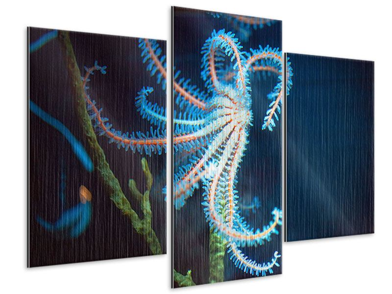 Metallic-Bild 3-teilig modern Aquarium