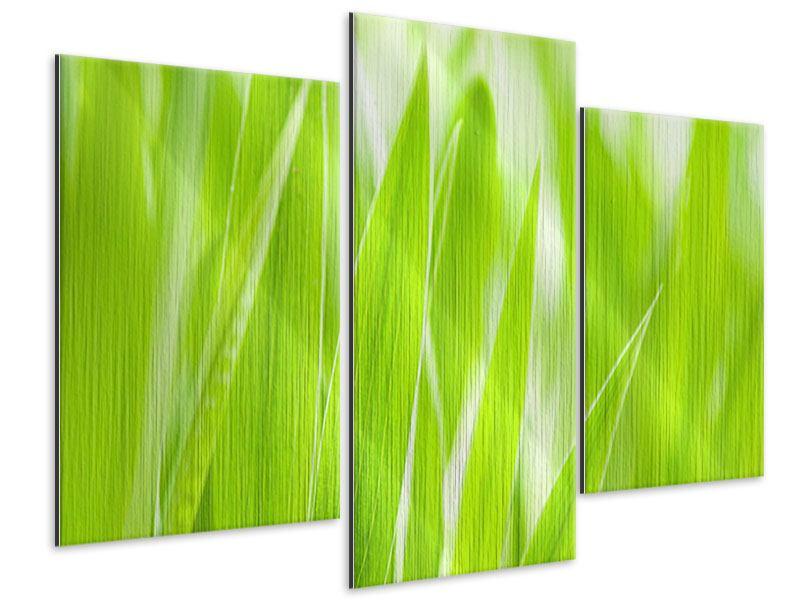 Metallic-Bild 3-teilig modern Gras XXL