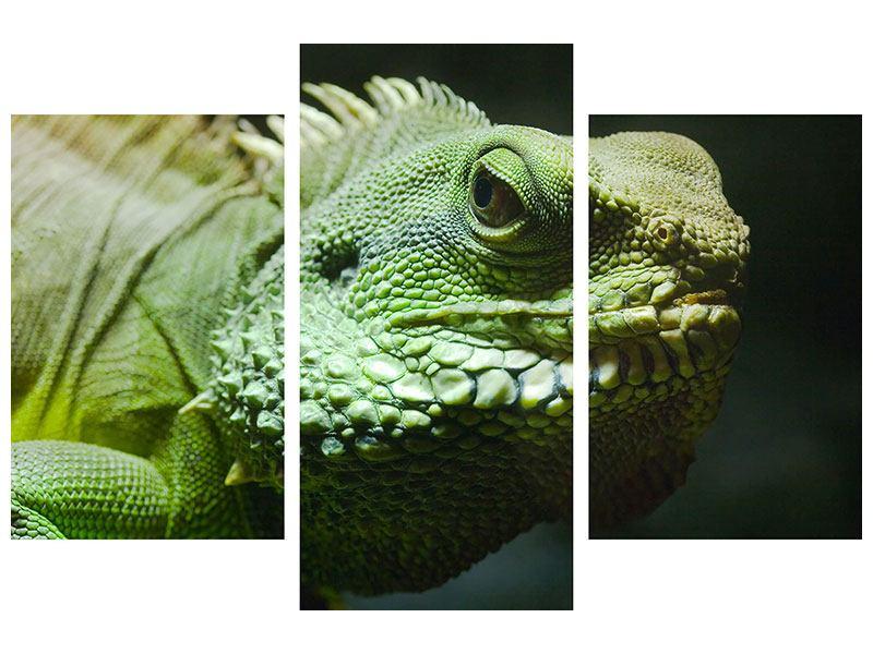 Metallic-Bild 3-teilig modern XXL Leguan