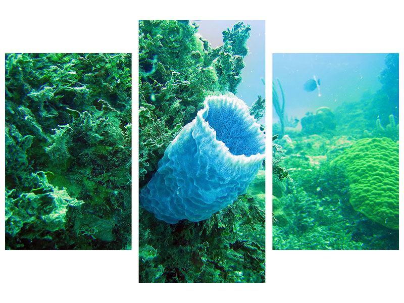 Metallic-Bild 3-teilig modern Korallen