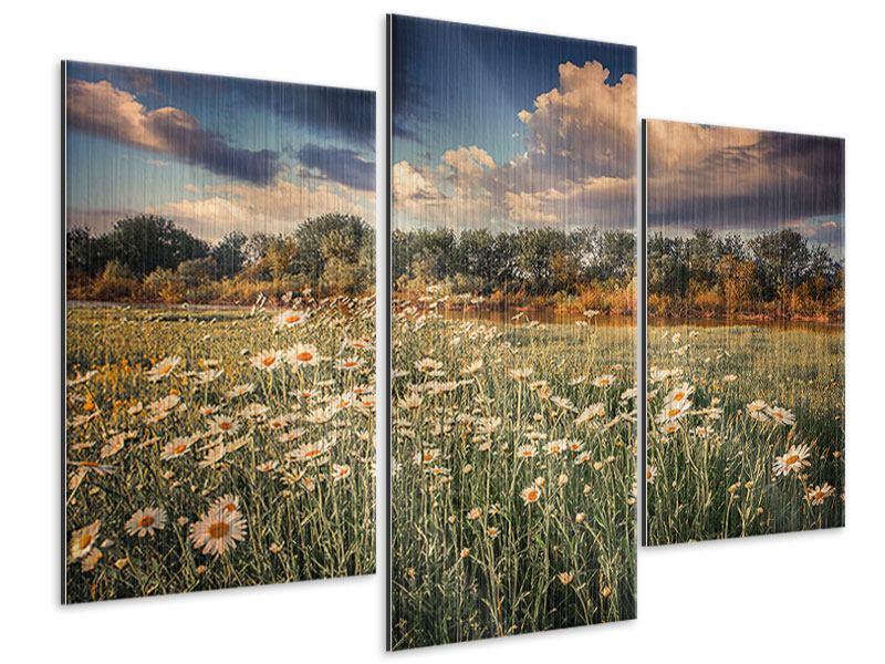 Metallic-Bild 3-teilig modern Die Wiesenmargerite am Fluss