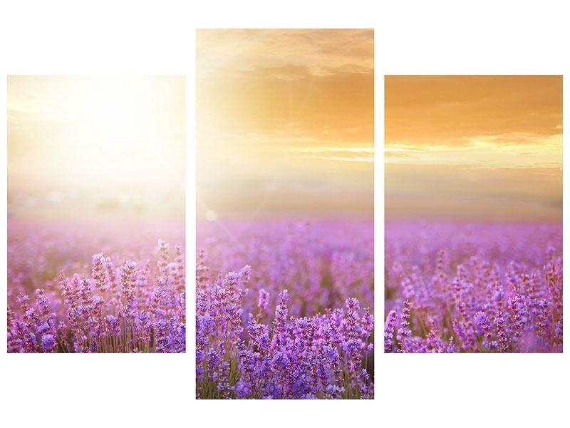 Metallic-Bild 3-teilig modern Sonnenuntergang beim Lavendelfeld