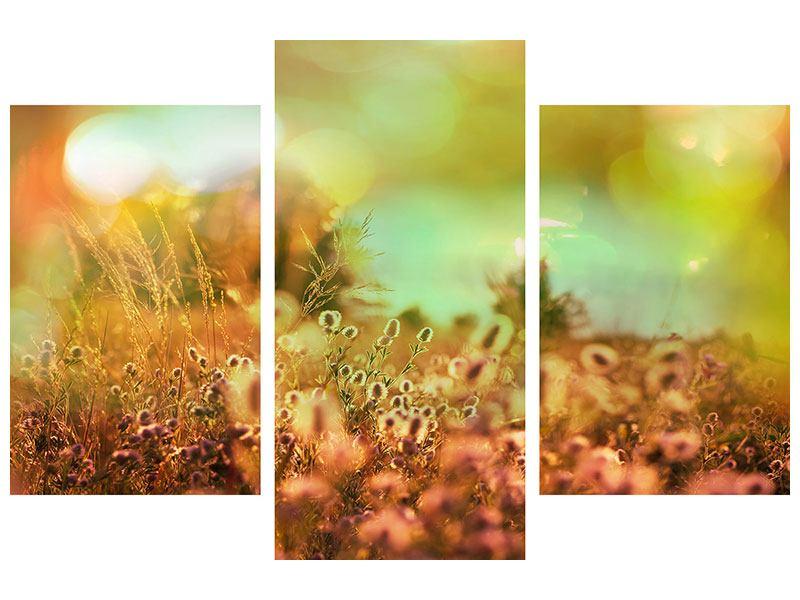 Metallic-Bild 3-teilig modern Blumenwiese in der Abenddämmerung