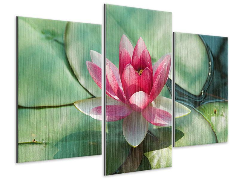 Metallic-Bild 3-teilig modern Der Frosch und das Lotusblatt
