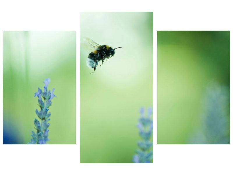 Metallic-Bild 3-teilig modern Die Biene