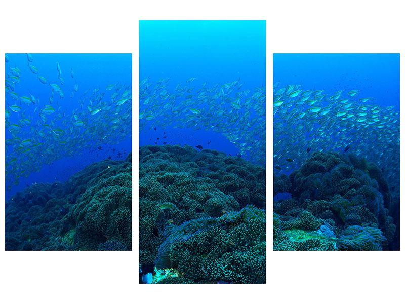Metallic-Bild 3-teilig modern Fischschwärme