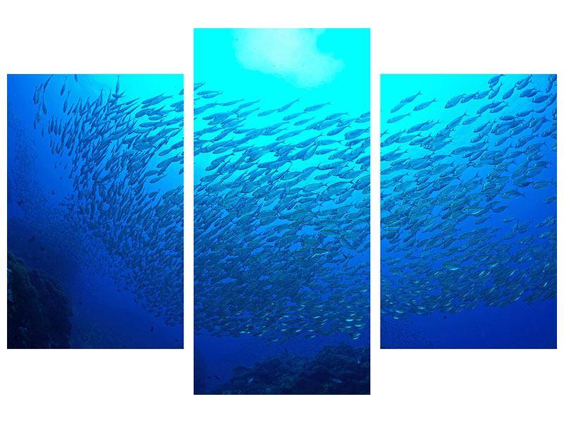 Metallic-Bild 3-teilig modern Fischwelt