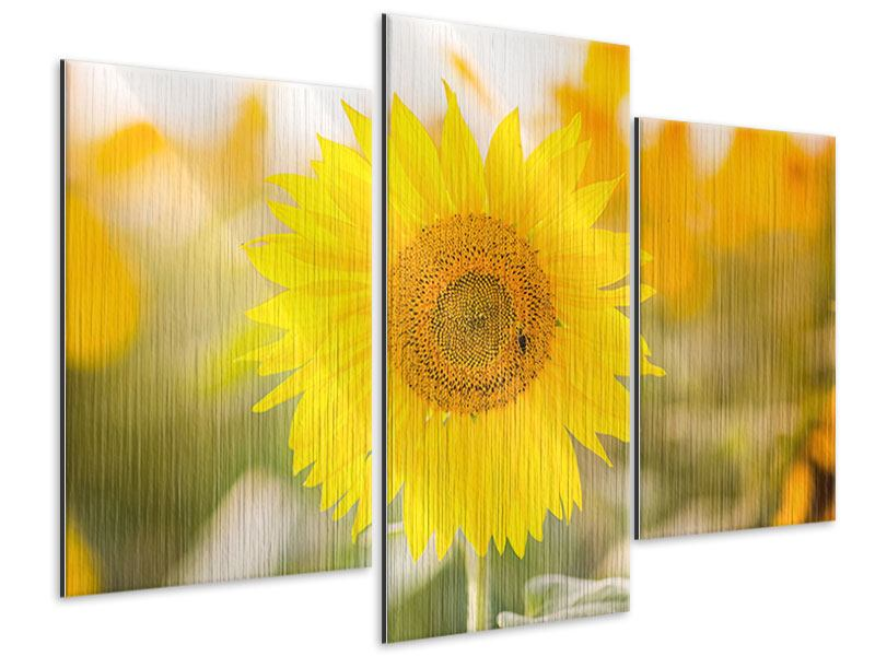 Metallic-Bild 3-teilig modern Sunflower