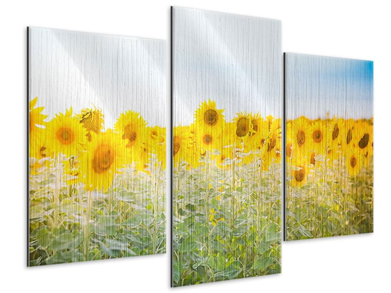 Metallic-Bild 3-teilig modern Im Sonnenblumenfeld