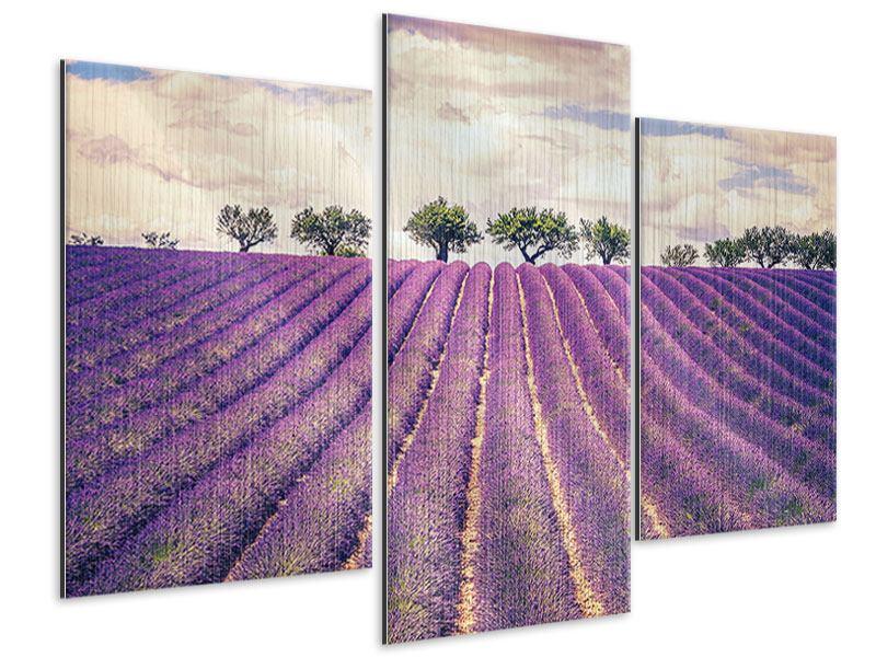 Metallic-Bild 3-teilig modern Das Lavendelfeld