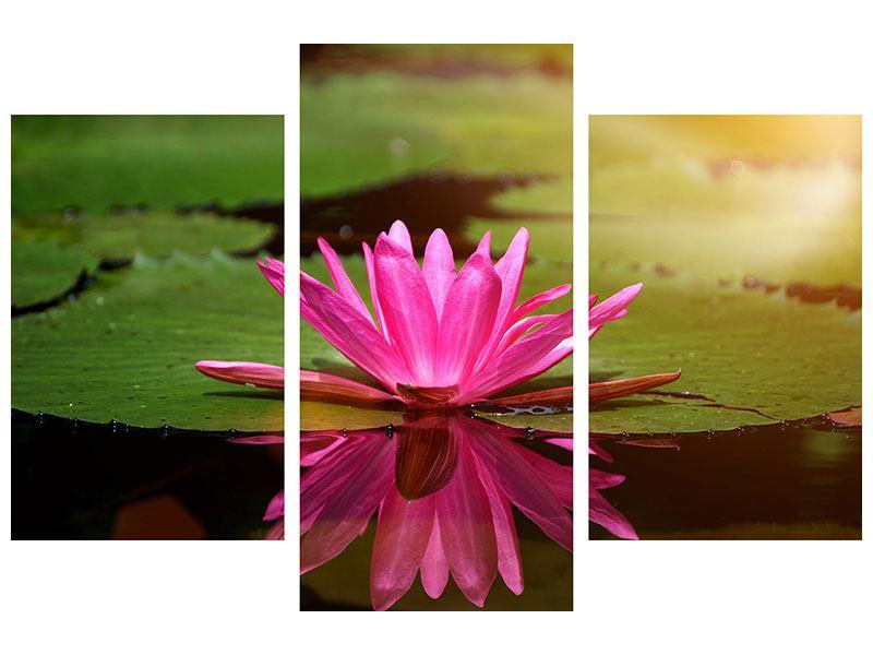 Metallic-Bild 3-teilig modern Lotus im Wasser