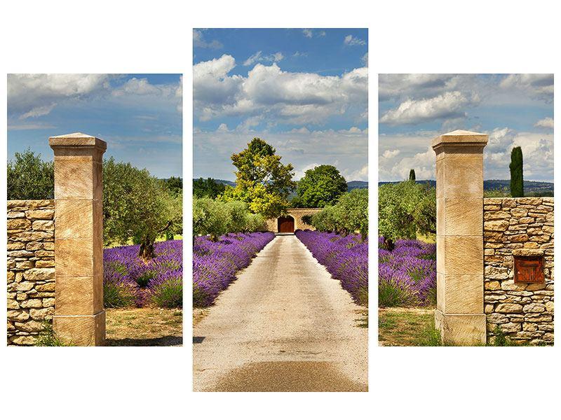 Metallic-Bild 3-teilig modern Lavendel-Garten