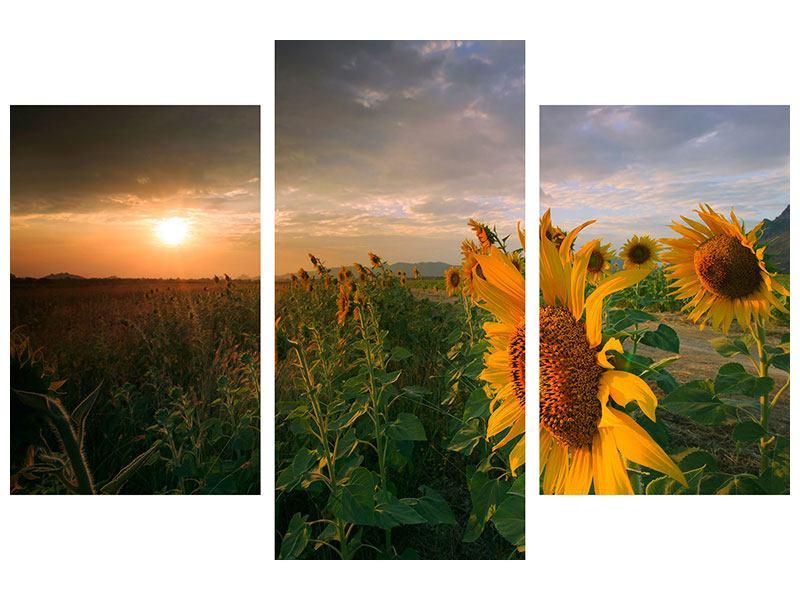 Metallic-Bild 3-teilig modern Sonnenblumen im Lichtspiel