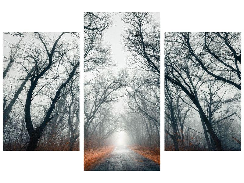 Metallic-Bild 3-teilig modern Mysteriöse Stimmung im Wald