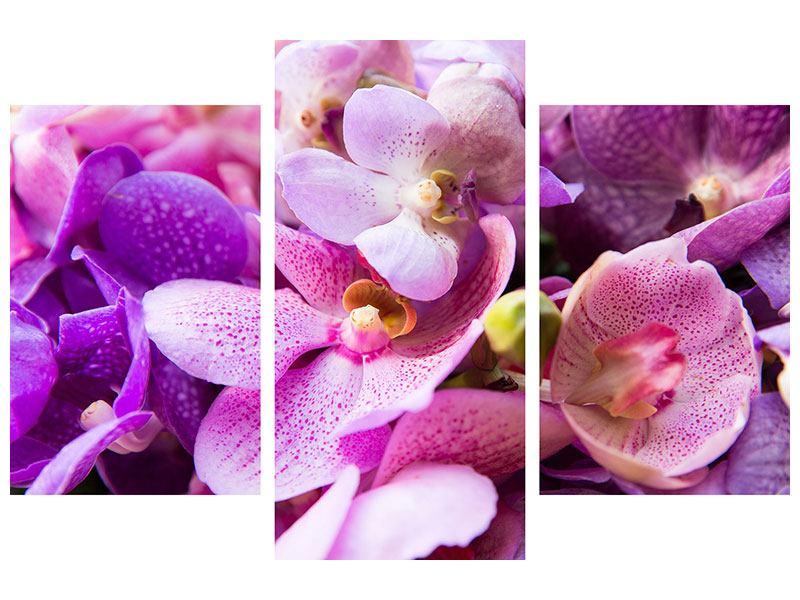 Metallic-Bild 3-teilig modern Im Orchideenparadies