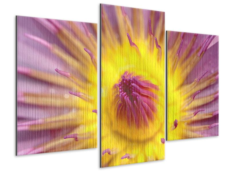 Metallic-Bild 3-teilig modern XXL-Lotus