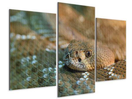 Metallic-Bild 3-teilig modern Viper