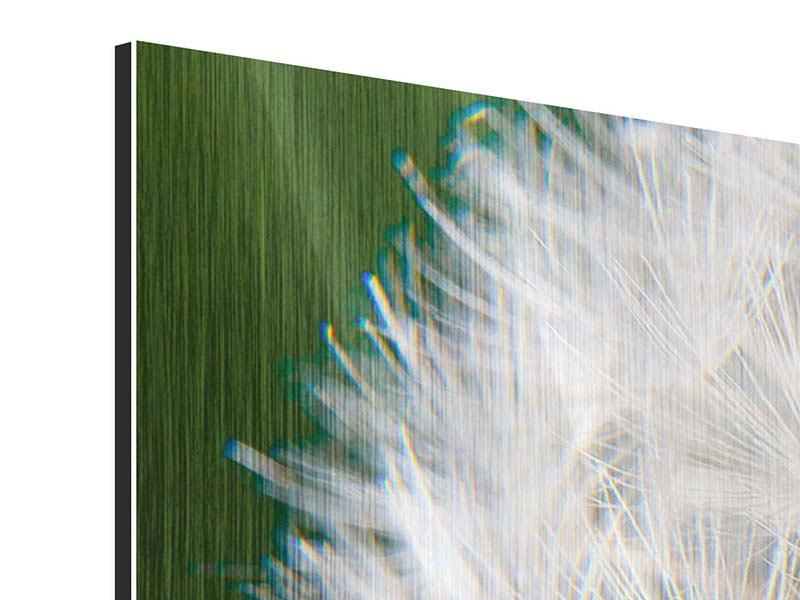 Metallic-Bild 3-teilig modern Riesenlöwenzahn
