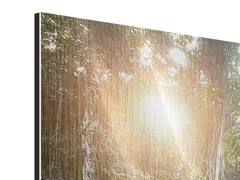 Metallic-Bild 3-teilig modern Naturschauspiel