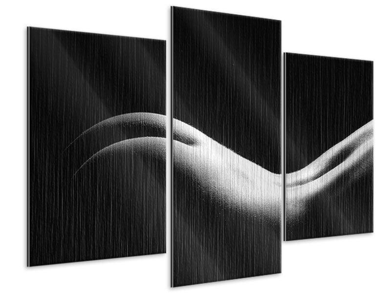 Metallic-Bild 3-teilig modern Nude