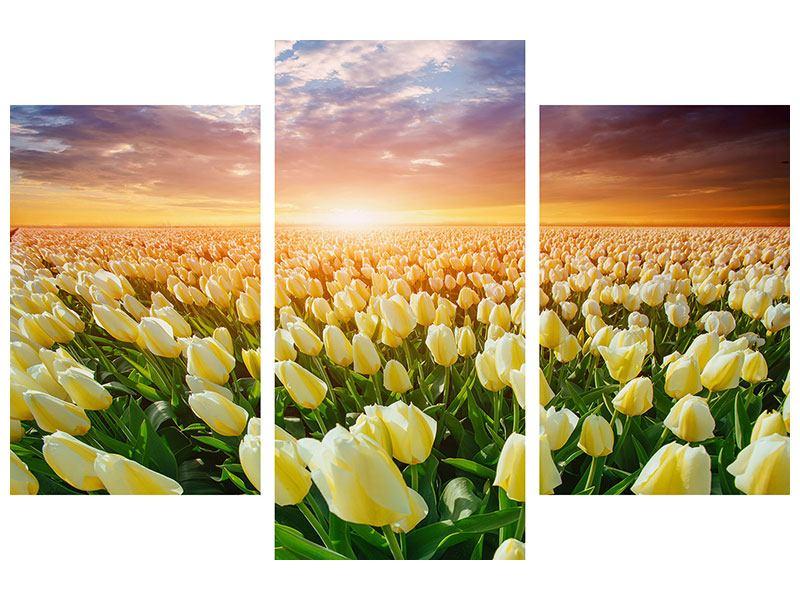 Metallic-Bild 3-teilig modern Sonnenaufgang bei den Tulpen
