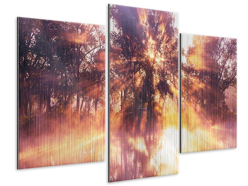 Metallic-Bild 3-teilig modern Die Waldspiegelung