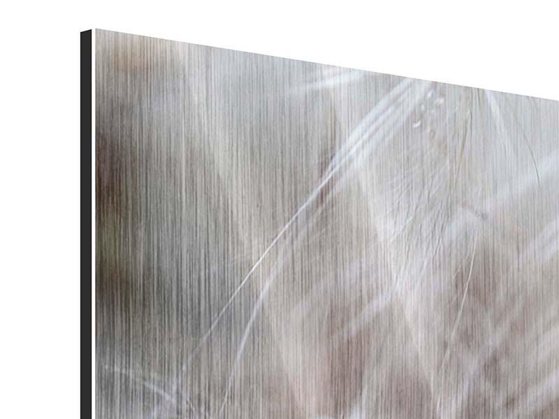 Metallic-Bild 3-teilig modern Close up Blütenfasern
